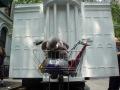 skaggs-bush-34-whitehouseelephant