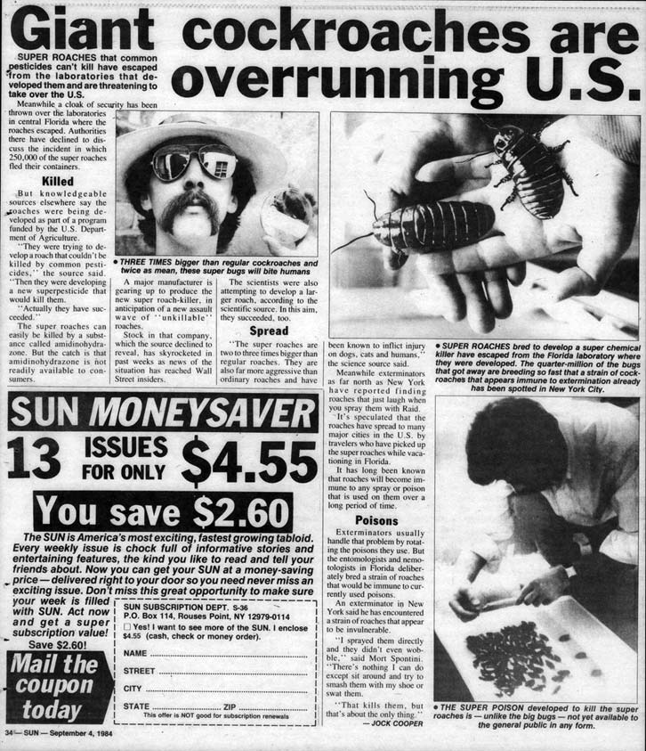Giant Cockroaches are overrunning U.S., Sun, September 4, 1984
